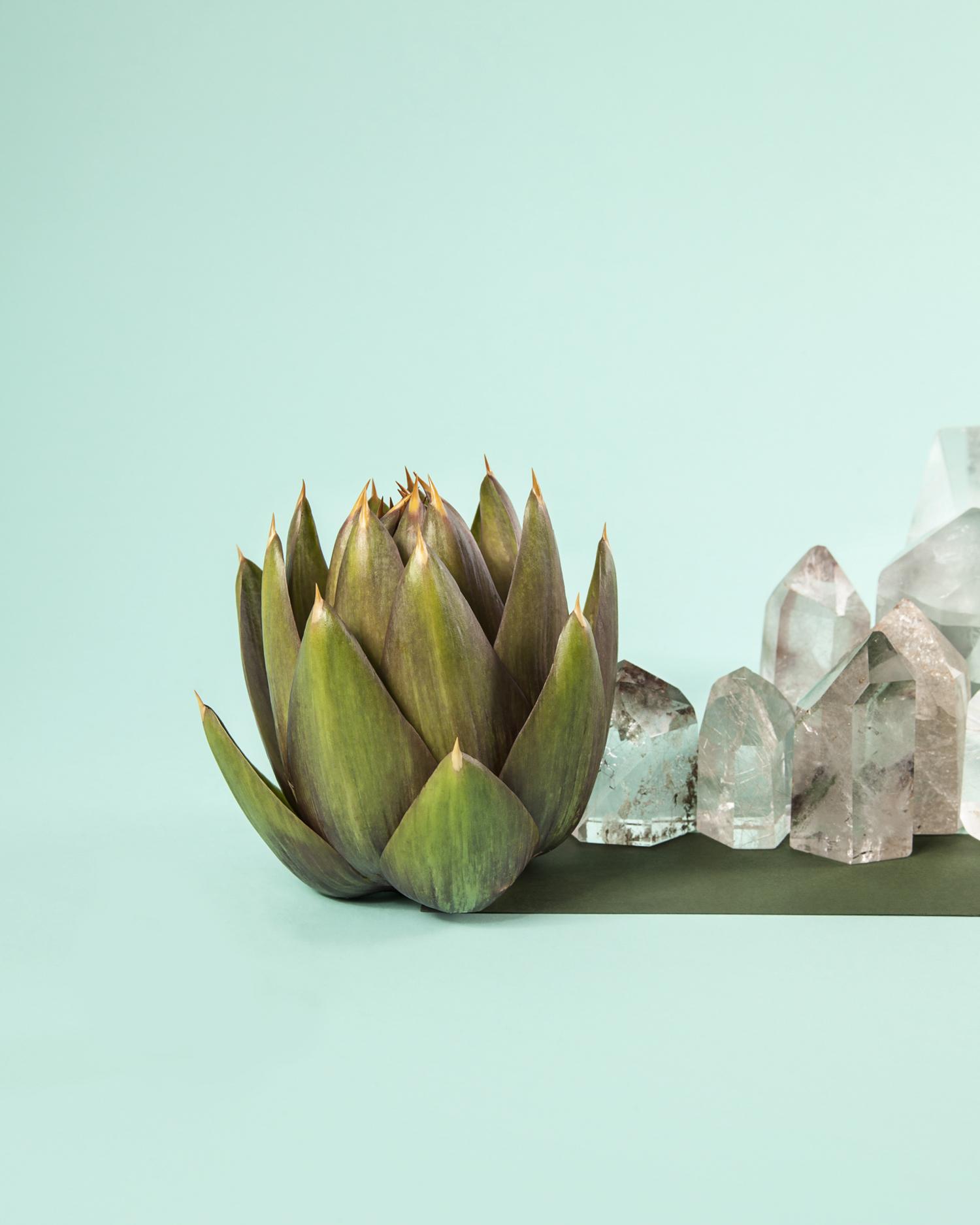 carcifo con cristalli